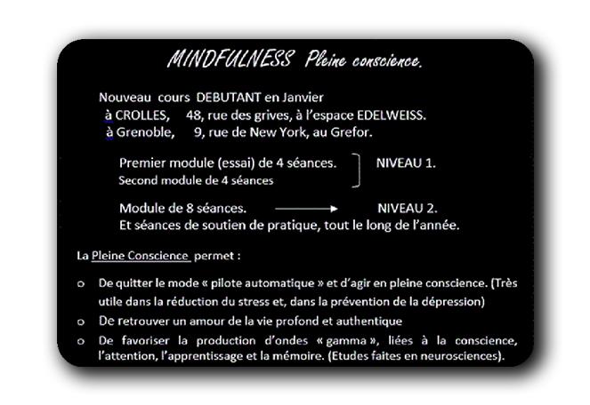 Modules de méditation pleine conscience, mindfulness à Grenoble